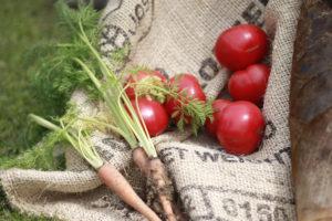 無料写真素材 トマトとニンジン