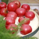 赤いトマトと樽