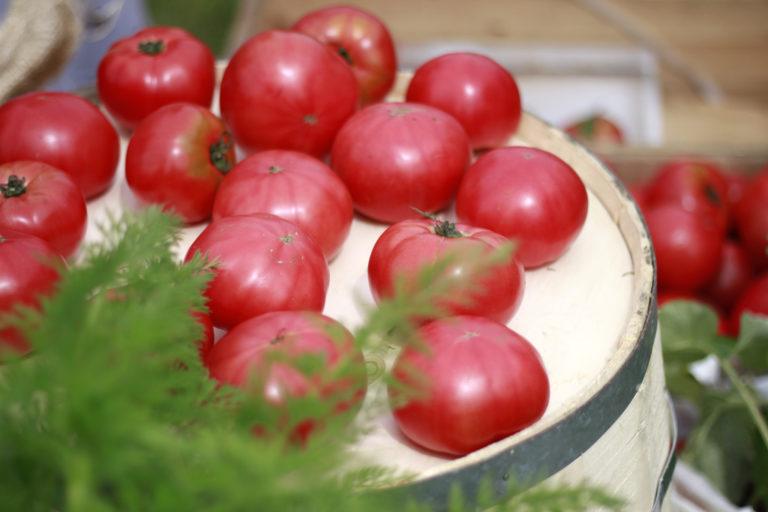 無料写真素材 雑貨 トマト