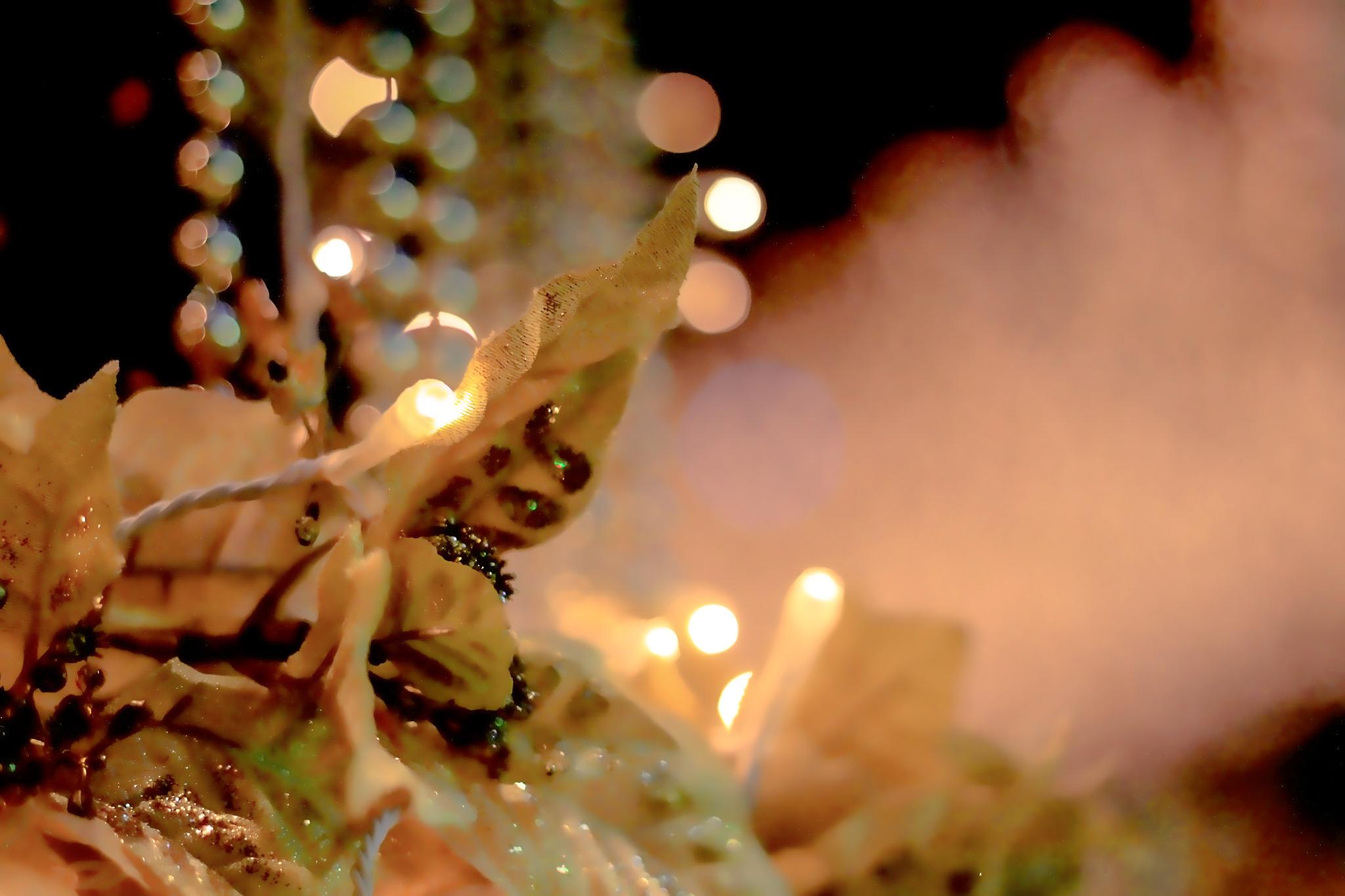 葉っぱと電球