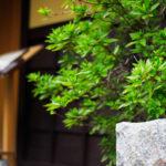 京都 祇園の街並み