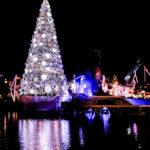 巨大クリスマスツリーのイルミネーション 1