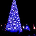 巨大クリスマスツリーのイルミネーション 2