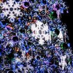 クリスマスツリーのイルミネーション 2