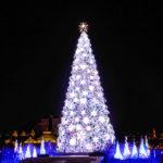 巨大クリスマスツリーのイルミネーション 3