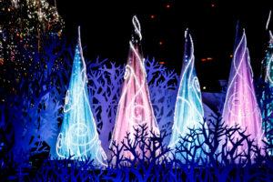 クリスマスツリーのイルミネーション