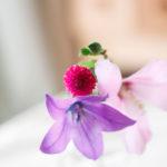 小さな花瓶の桔梗と薄ピンクの花 2