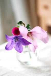 小さな花瓶の桔梗と薄ピンクの花