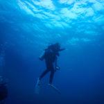 沖縄石垣島 海中のダイバー