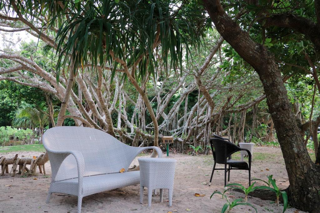 森の中の白いソファーといす
