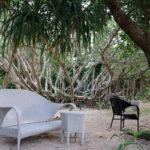 森の中の白いベンチといす