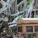 森の中の木箱