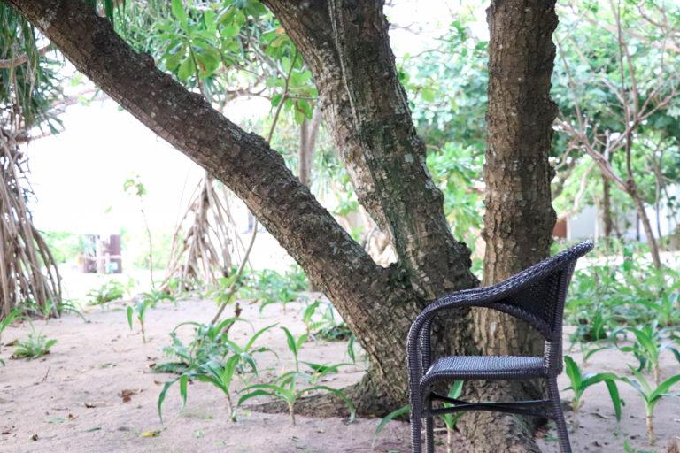 森の中の黒い椅子