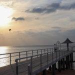 石垣島 夕暮れのフサキビーチ 4