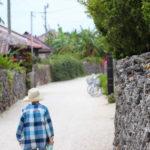 沖縄 竹富島の集落 3