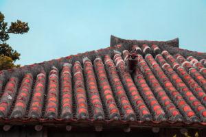 沖縄 竹富島の集落石 石垣 多肉植物 熱帯植物