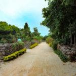 沖縄 竹富島の町並み 道 4