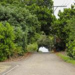 沖縄 竹富島の町並み 道 5