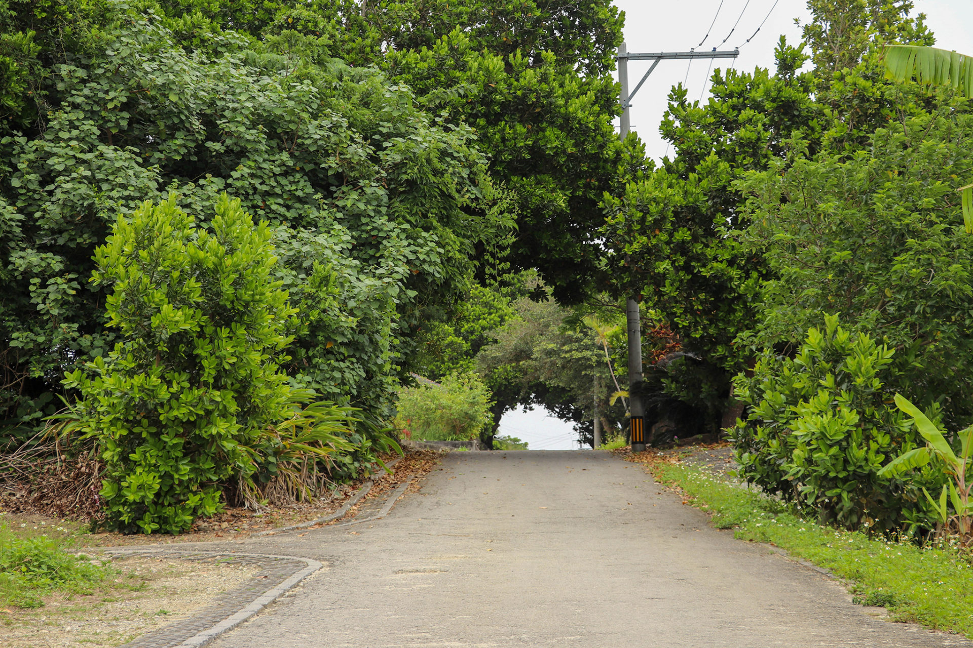 沖縄 竹富島の町並み 道