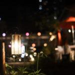 神戸 夜の散歩道 MOSAICの遊歩道