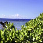 古宇利島 ティーヌ浜の海 ハートロック 1