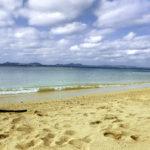 南国の青い海と砂浜と流木 2