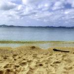 南国の青い海と砂浜と流木 1