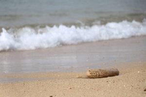 南国の海 砂浜と波打ち際