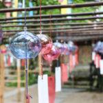 京都 宇治 正寿院 風鈴まつり 17