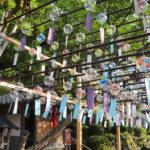 京都 宇治 正寿院 風鈴まつり 31