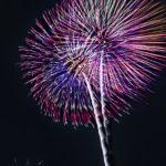 夜空に舞う色鮮やかで美しい大輪の花火