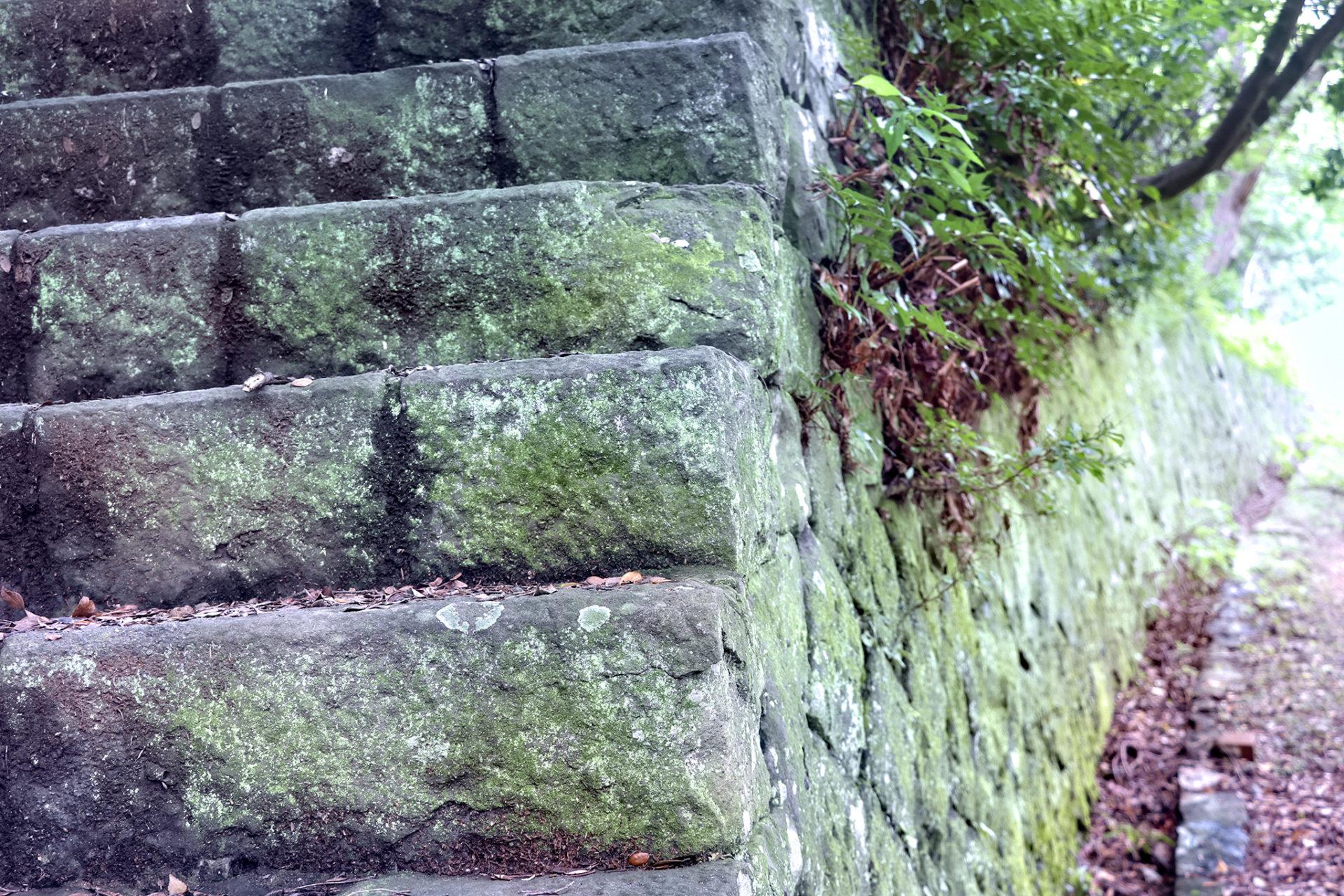 友が島の苔むした石の階段