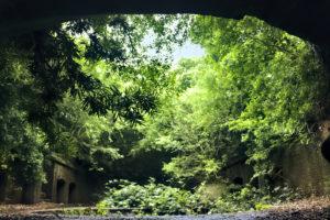 友が島 第三砲台のトンネル内から外を見た景色
