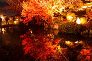 清水寺 水面に映る紅葉
