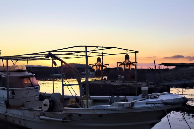 下津井漁港 夕暮れの干しだこの風景