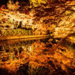 清水寺 池に反射するきれいな紅葉