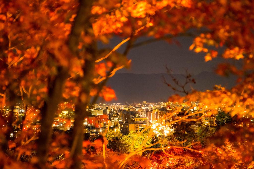 清水寺の高台から見る京都の町並み