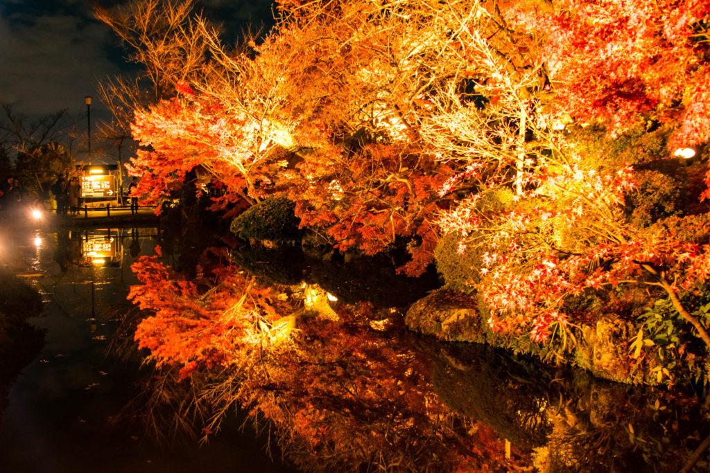 水面に照らされ鏡のように映し出された紅葉