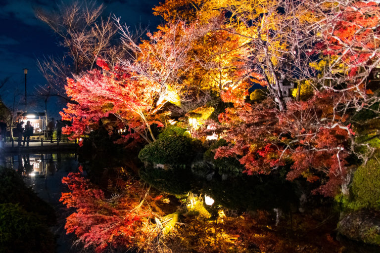 水面にライトアップされて映し出された紅葉