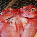 お土産用に売られている魚の干物