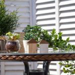 テラスのテーブル。家と観葉植物