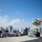 街を見下ろす風景と花・観葉植物